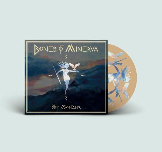 Vinyl Record PSD MockUp blanco 2
